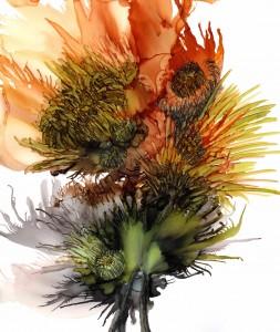 Desert Blossoms 1