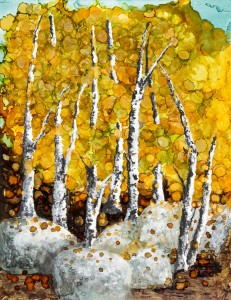 Fall Birch Commish Med