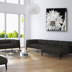 Desert Blossom in room
